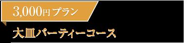 3000円プラン 大皿パーティーコース